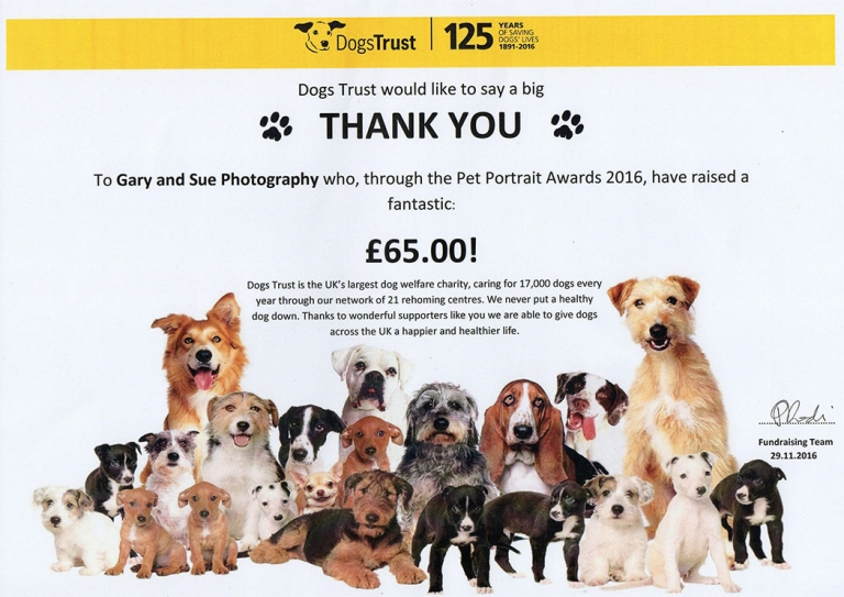 Dogs Trust Thank You Certificate